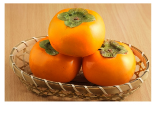 ダンディーコア  柿タンニン