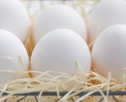 脂質異常症はコレステロールと中性脂肪を控えることが重要です